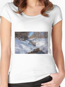 HDR Snowy pond Women's Fitted Scoop T-Shirt