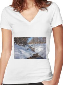 HDR Snowy pond Women's Fitted V-Neck T-Shirt