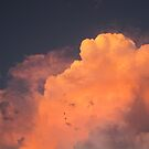 Pink Clouds by thejessis