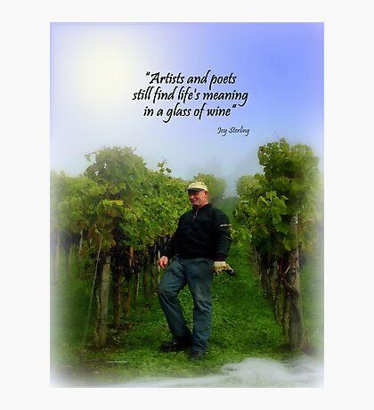 Swiss Vineyard Photographic Print
