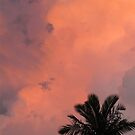 Pink Sky Silhouette by thejessis