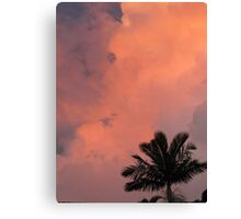 Pink Sky Silhouette Canvas Print