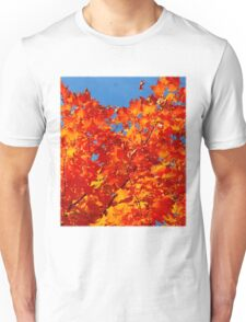 I know that I will never let go.. I know that I will always grow.. I'm on fire.. I'll never burn out T-Shirt