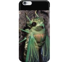 Cicada of Emerald & Gold iPhone Case/Skin