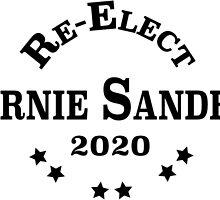 Re-Elect Bernie Sanders 2020 - Collegiate by PsychicCatStore