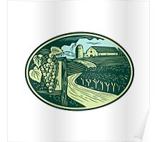 Grapes Vineyard Winery Oval Woodcut Poster