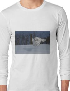 Low altitude Long Sleeve T-Shirt