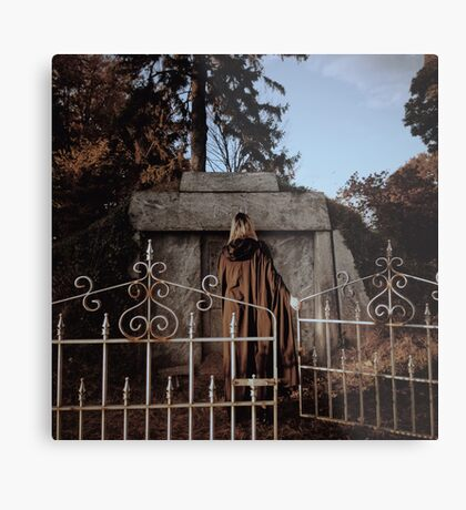 Cemetary Gates Metal Print