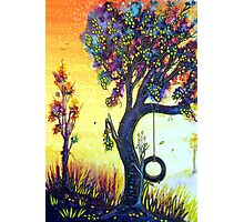 Tree Swing Photographic Print
