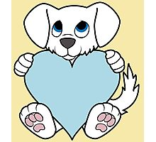 Valentine's Day White Dog with Light Blue Heart Photographic Print