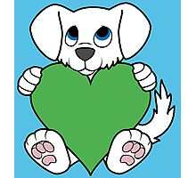 Valentine's Day White Dog with Green Heart Photographic Print