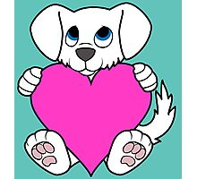 Valentine's Day White Dog with Pink Heart Photographic Print