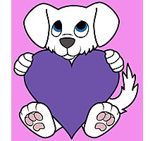 Valentine's Day White Dog with Purple Heart Photographic Print