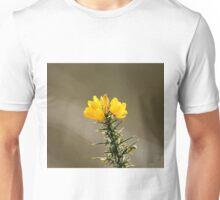 Yellow Gorse Flowers Unisex T-Shirt