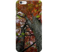 Locked in the darkened world..Made to never last..That's where the dreams you seek are like stories from the past..The leaves will be falling fast iPhone Case/Skin