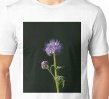 Phacelia tanacetifolia Wild flower  Unisex T-Shirt