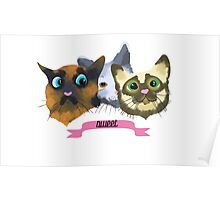 Sweet Cats Poster