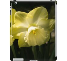 Sunny Pair - Glowing Mellow Yellow Narcissus Blooms iPad Case/Skin