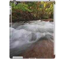 Broadwater Rush iPad Case/Skin