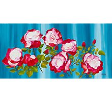 Pink Roses on Blue Photographic Print