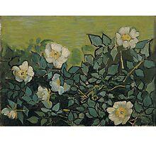 Vincent Van Gogh - Wild roses, Famous Painting. Impressionism. Van Gogh Photographic Print