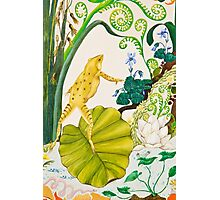Frog and Lilly Photographic Print