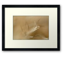 Abstract Fur Framed Print