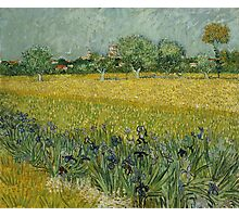 Vincent Van Gogh -Impressionism. Field with Flowers near Arles, 1888 Vincent Van Gogh Photographic Print