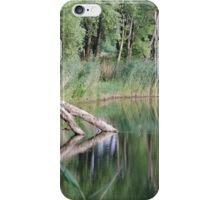 Lake with Fallen Tree Trunk iPhone Case/Skin