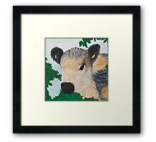 Curly Calf No.7 Framed Print