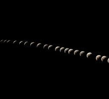 Lunar Eclipse Timelapse by Kristin Repsher