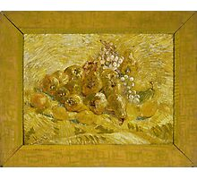 Vincent Van Gogh - Quinces, lemons, pears and grapes, September 1887 - October 1887 Photographic Print
