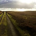 North York Moors National Park, UK by GeorgeOne