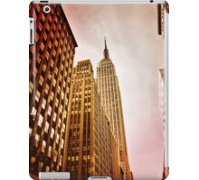 NYC including Empire State Building  iPad Case/Skin