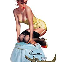 pin up girl by RusticShiraz