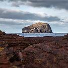 Bass Rock in Scotland by Jeremy Lavender Photography