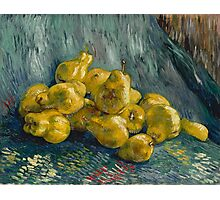 Vincent Van Gogh  Post- Impressionism Oil Painting, Still Life with Quinces, 1888 - 1889 Photographic Print