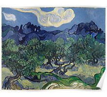 Vincent Van Gogh - The Olive Trees, 1889 Poster