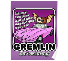 Gremlins don't follow ALL the rules Poster