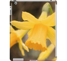 The first days of February iPad Case/Skin