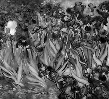 Vincent Van Gogh - Irises (Black and White) by lifetree