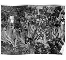 Vincent Van Gogh - Irises (Black and White) Poster
