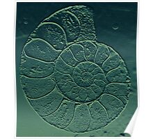Geology Theme Ammonite in Blue-green and Grey Poster