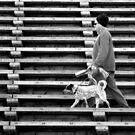 Dog Walker by Betsy  Seeton