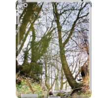 Mirrored World iPad Case/Skin