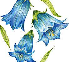 Bluebell by lisenok