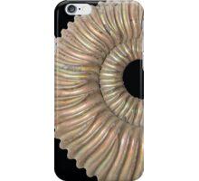 Peltoceras iPhone Case/Skin