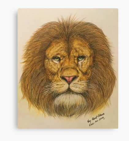 Regal Lion Drawing Canvas Print
