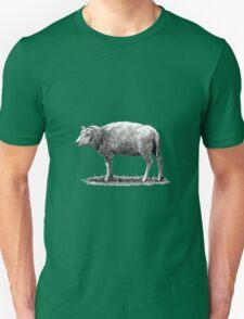 Woolly Sheep Pencil Drawing T-Shirt