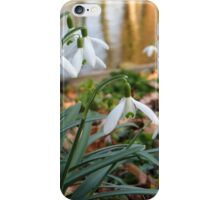 Snowdrop iPhone Case/Skin